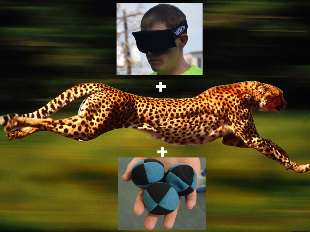 Blindfold speed juggling cheeta